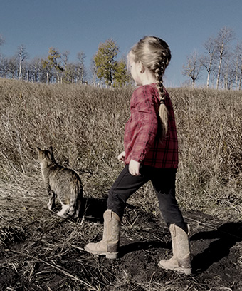 child and cat walking in field